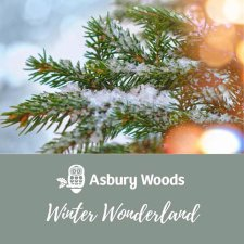 Asbury Woods Presents 22nd Annual Winter Wonderland Event